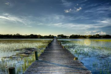 dock over marsh