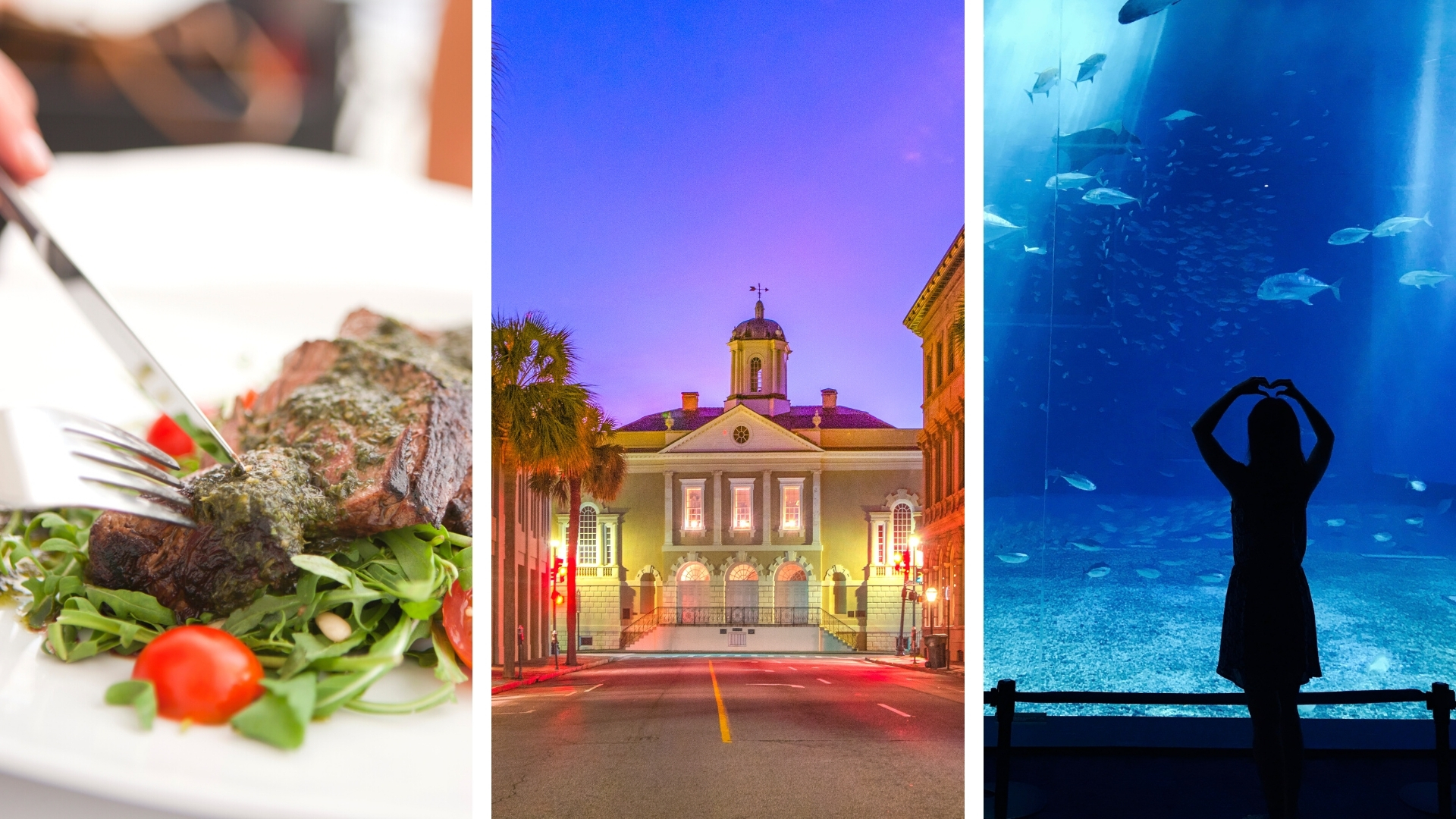 What to Do Downtown Charleston for Spoleto Festival - Dining, Old Exchange, and Aquarium