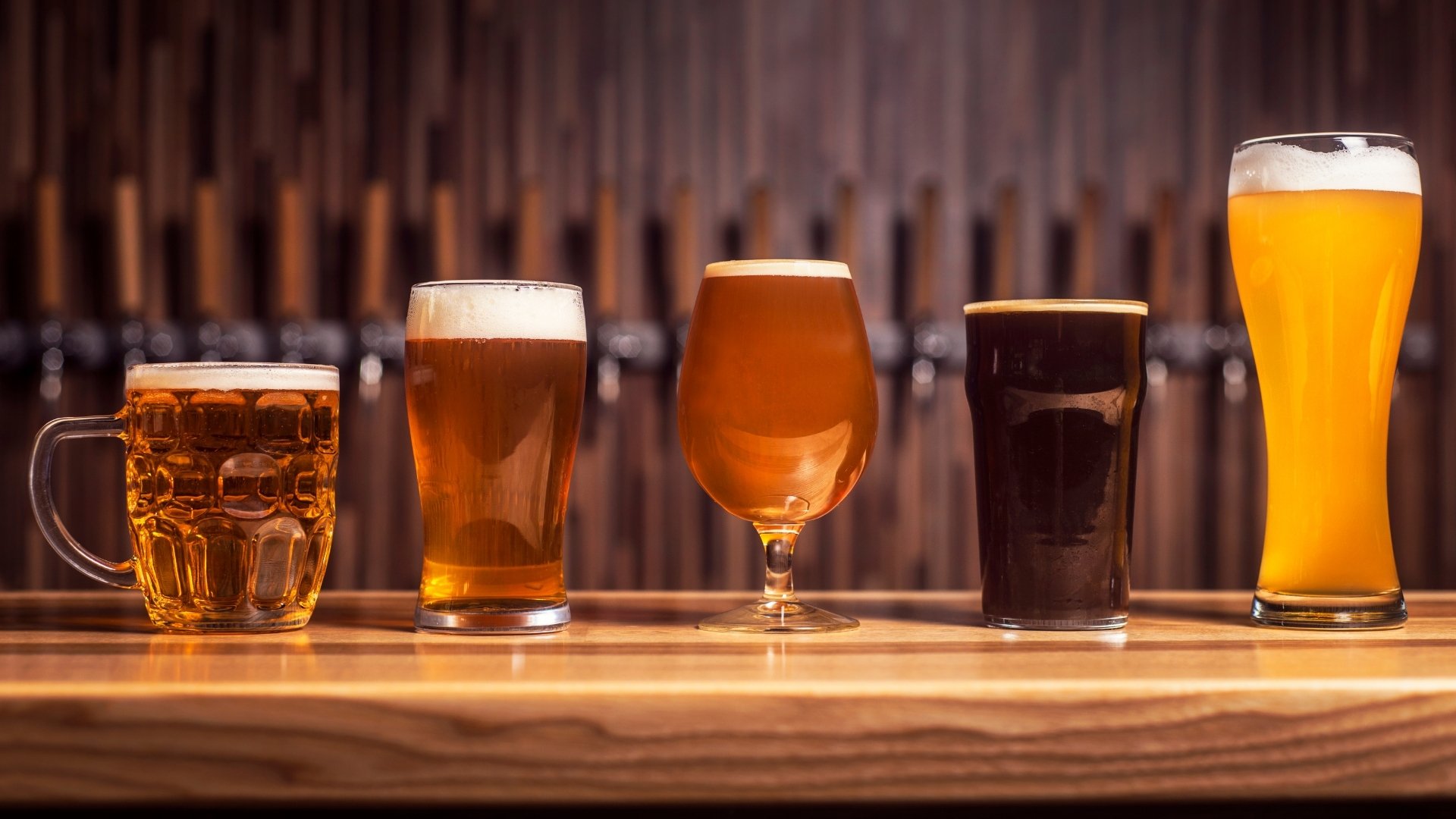 Selection of Craft Beer in Charleston SC